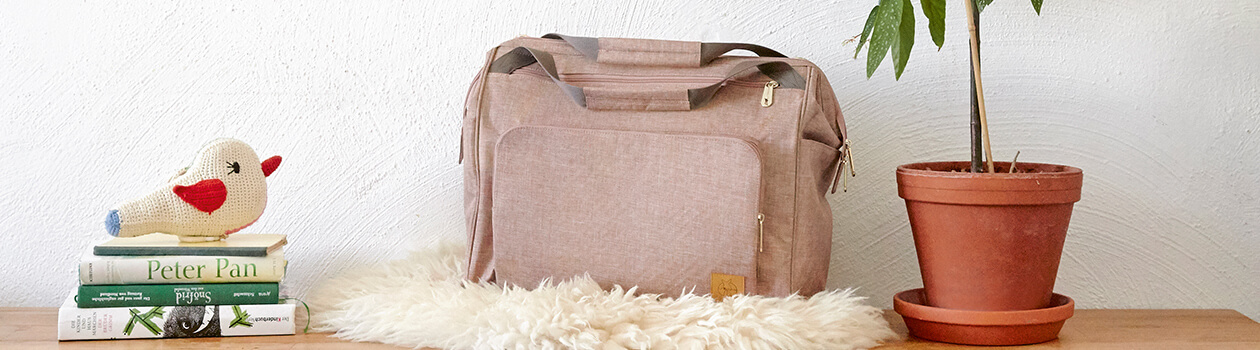 Twin Diaper Bags